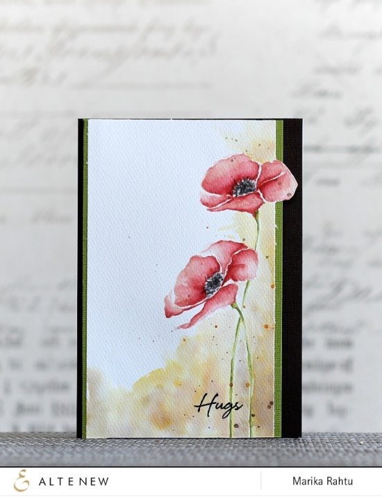 Stamps used: Painted Poppy, Sketchy Rose with Distress Inks.