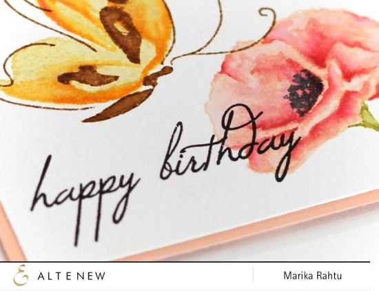 Stamps used: Painted Butterflies, Painted Poppy and Birthday Greetings.